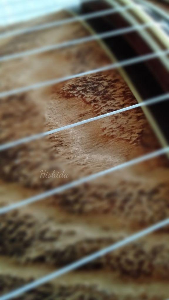 琴の糸送り 琴教室 安城市からも便利